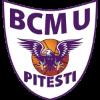 bcmu_pitesti_logo2