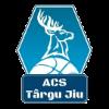 ACS_targu_jiu