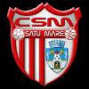 CSM_Satu_Mare_logo
